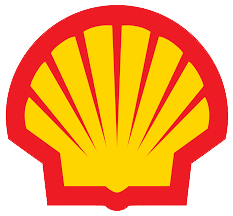 Shell_transparent